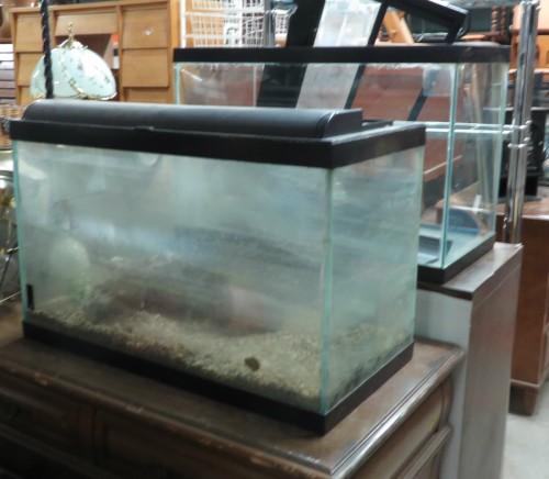 aquarium ARTÉ-MOMTRÉAL
